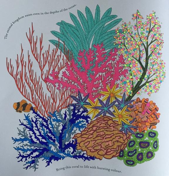 Colorful Sea Coral Media Staedtler Triplus Fineliners Stabilo 88 Gel Pens Source Animal Kingdom Publisher Artist Millie Marotta