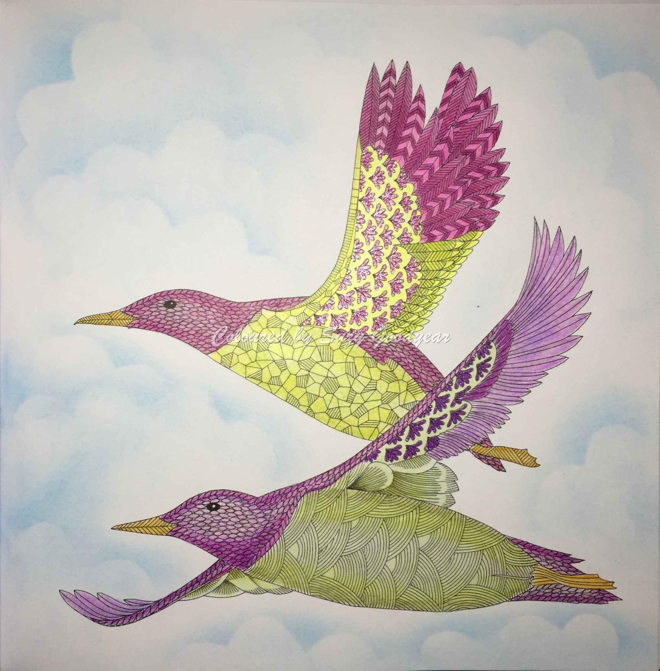 Two Birds Flying Media Prismacolor Premier Colored Pencils Super Doodle Glitter Gel Pens Source Animal Kingdom Publisher Artist Millie Marotta