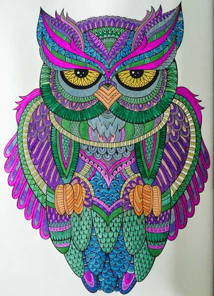 Brightly Colored Owl With Purple Feathers