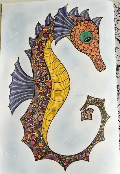 Seahorse with Blue Eyeshadow Background