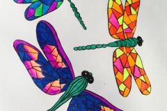 Multicoloured-Dragonflies