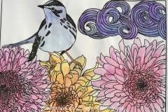 Blue Bird on Flowers Wet