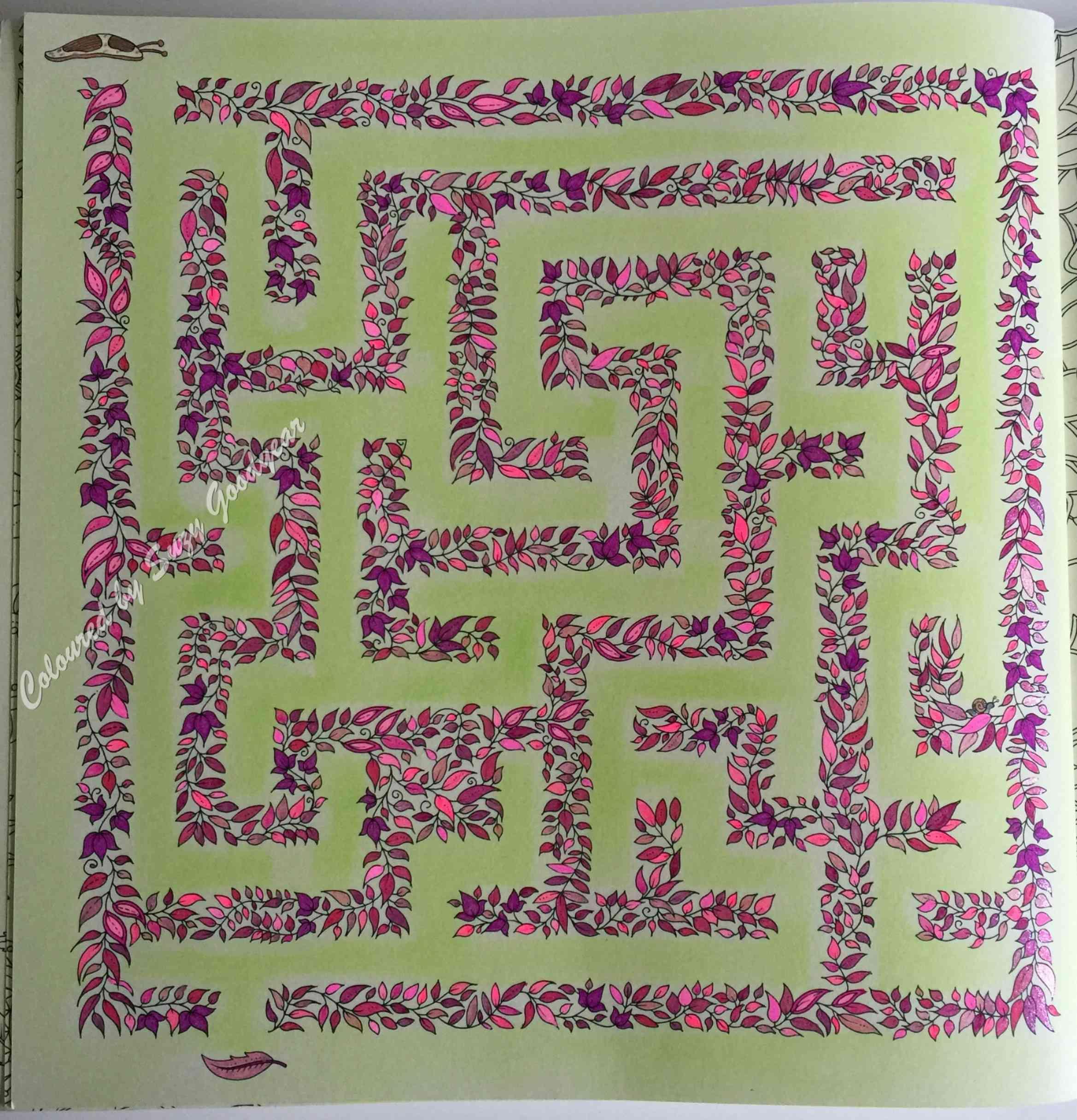 Secret Garden Square Maze